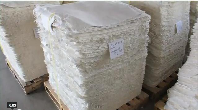 紙おむつリサイクル SOTRY